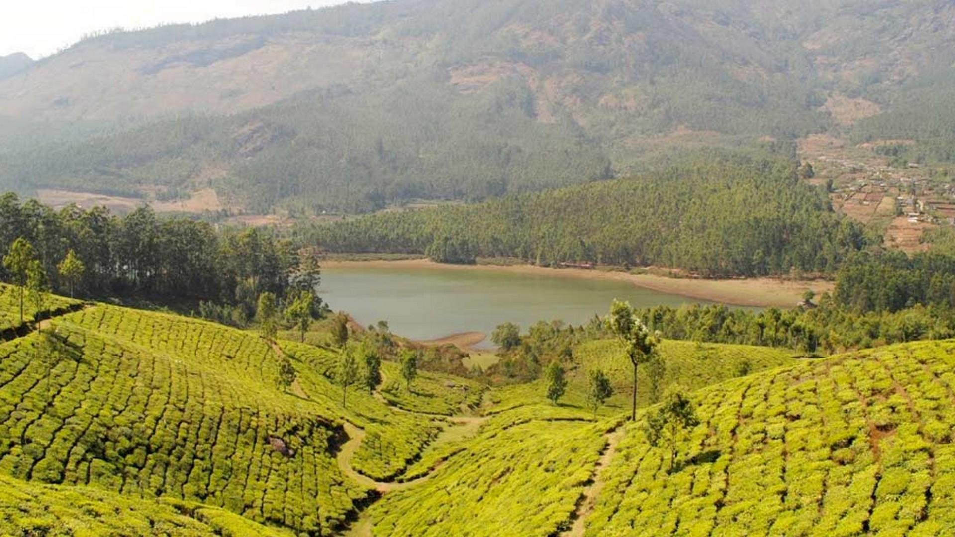 Devikulam in Munnar Kerala