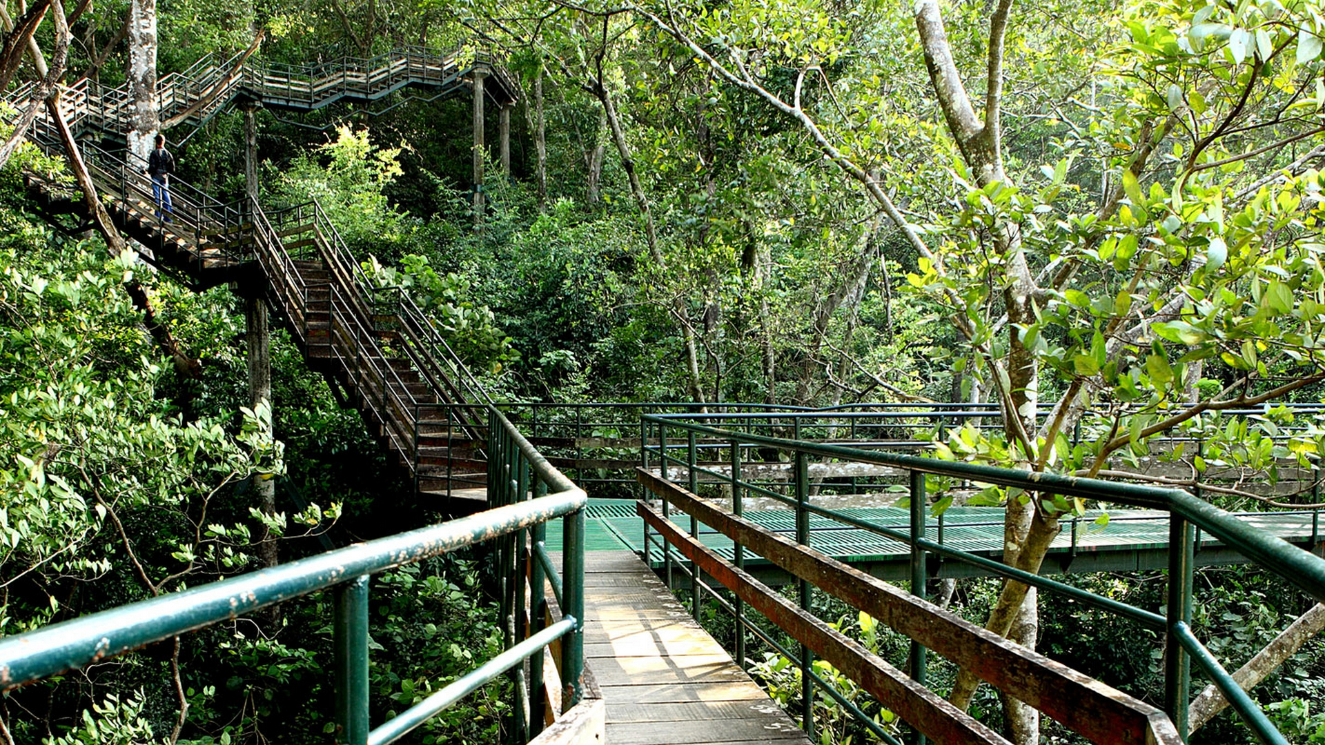 Thenmala Eco Tourism in Kollam