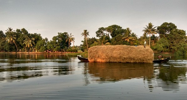 backwaters-kumarakom-kerala-1517992626.jpg