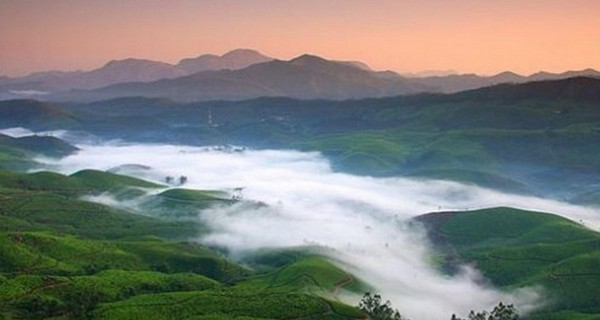 munnar-mist-over-tea-gardens-1518099790.jpg