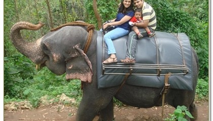Rishi Vijay riding on an elephant with family!