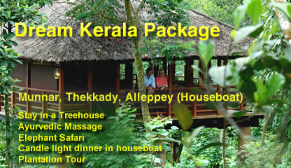 Launching Dream Kerala Honeymoon Package