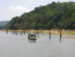 Thekkady Boating-New Timings