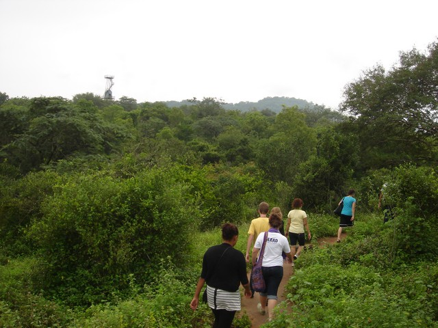 Nature Walking in Thekkady