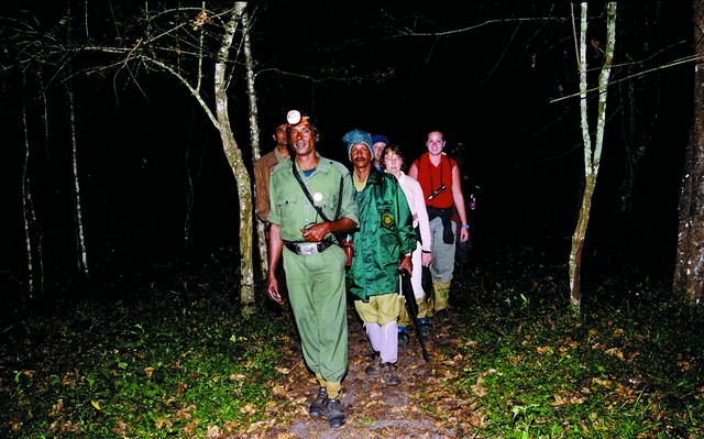 Jungle Patrolling at Night
