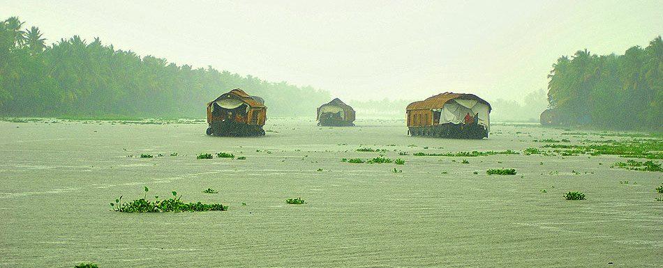 Kumarakom backwaters-Capital of Gods own country