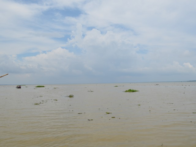 backwaters of kumarkom