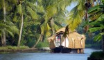 Day Cruise in Alleppey Backwaters