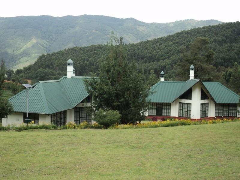 Camp Noel Munnar