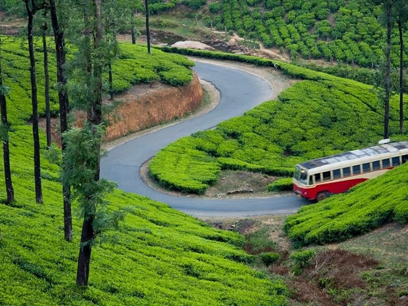 cochin-to-munnar-by-ksrtc-bus
