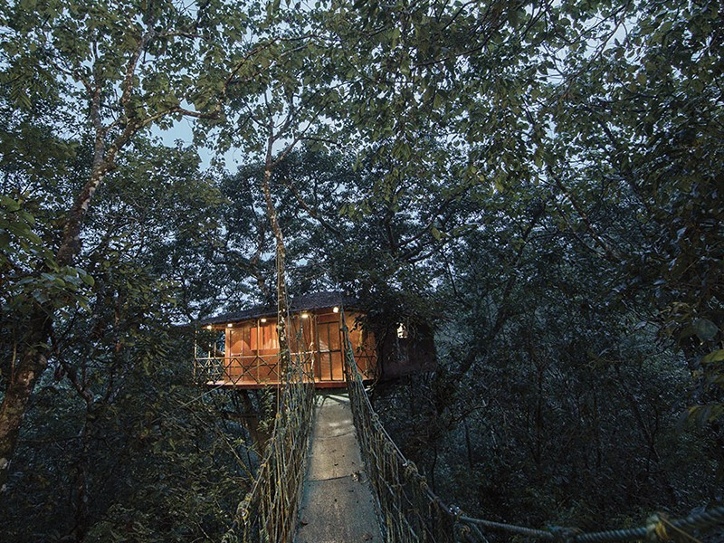 vythiri-resort-wayanad-treehouse