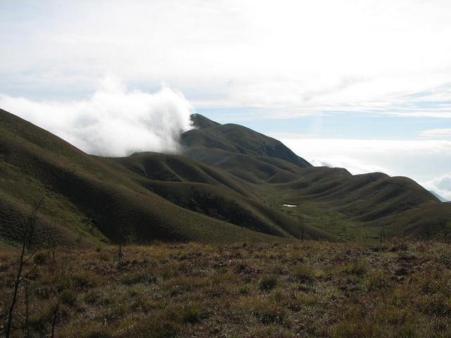meesapulimala-trekking-munnar