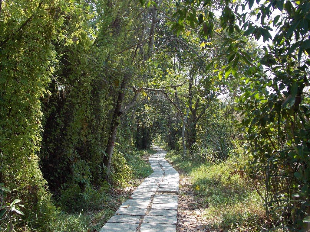 pathiramanal-island-walkway-toursit-spot