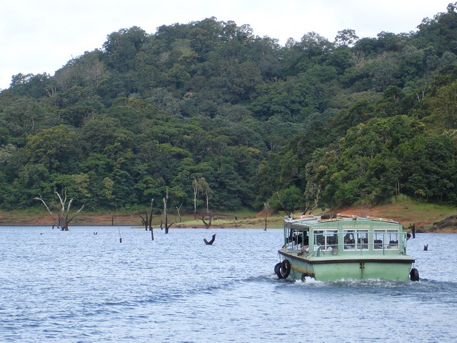 Thekkady's scenic beauty along with its wildlife can be viewed in a boat ride in the lake