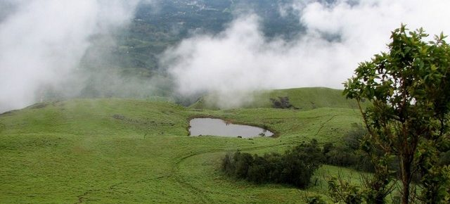 Best Time to Visit Wayanad