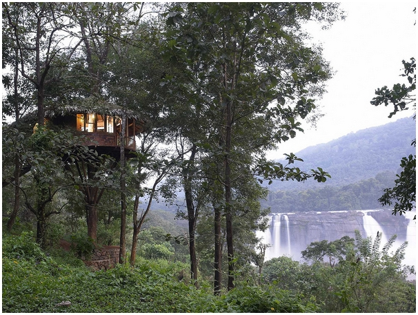 athirapally-rainforest-treehouse