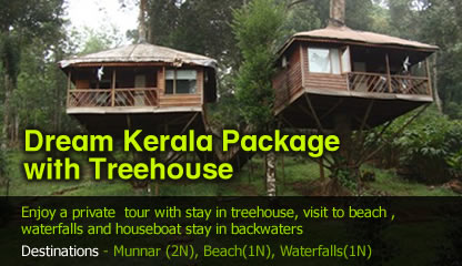 Dream Kerala Package with Treehouse Stay