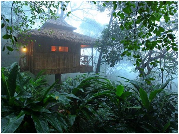 http://irisholidays.com/keralatourism/wp-content/uploads/2014/02/vanya-tree-house-thekkady.jpg
