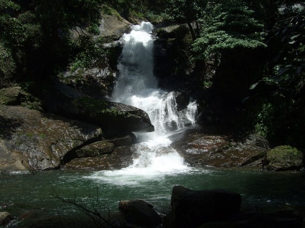 Meenvallam waterfall is a a combination of enchanting beauty and scenic splendor.