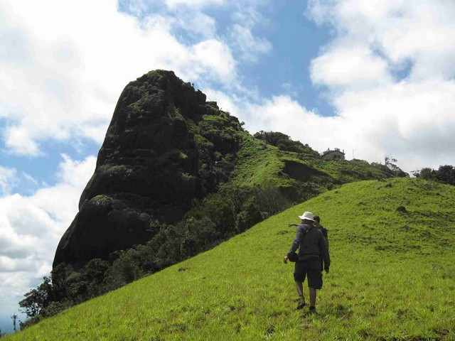 Chembara Peak in Wayanad, Meesapulimala and Kolukkumalai in Munnar and parts of mountain ranges near Thenmala are ideal for trekking in Kerala.