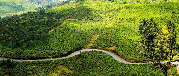 Vagamon Tourism Destinations
