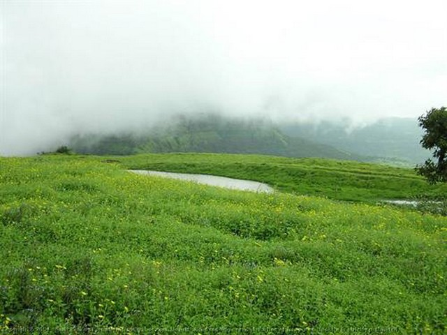 Vagamon Green Meadows