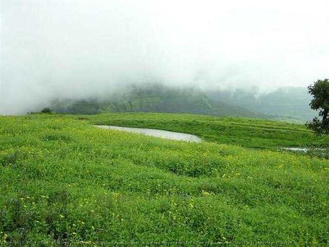 Vagamon Green Meadows