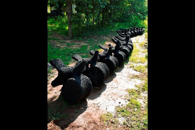 Shanthamani Muddaiah's Backbone (2014), a serpent-like installation in the form of a spinal column, a symbol for the artist of the forces that hold civilisations together.