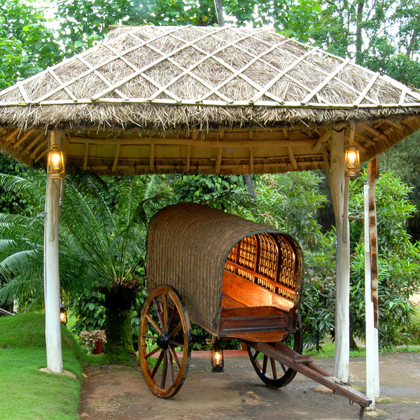 bullock-cart-ride-in-Kerala