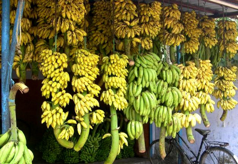 A Banana Shop in Kerala