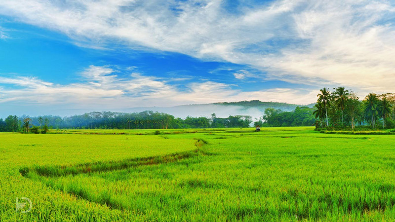 complete list of 70 best things to do in kerala with photos kerala