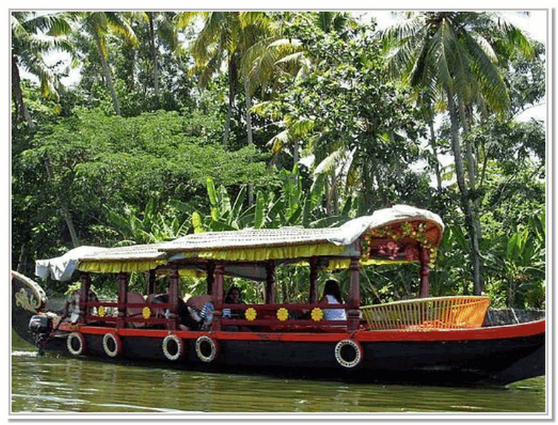 shikara-boat-backwaters-trip