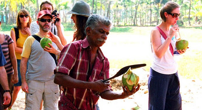 tender-coconut-water-kerala