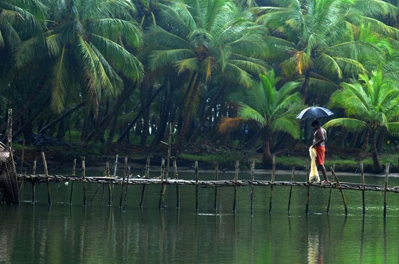 30 Kerala Images That Will Make You Want To Visit