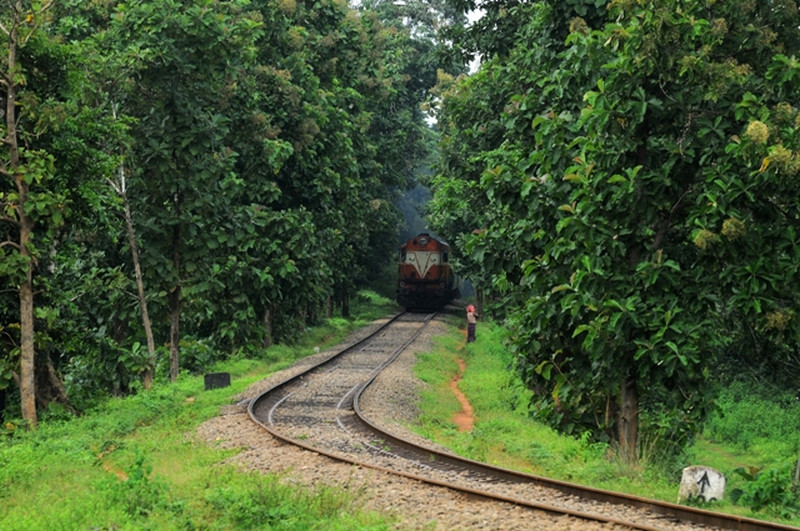 30 Kerala Images that will make you want to visit Kerala