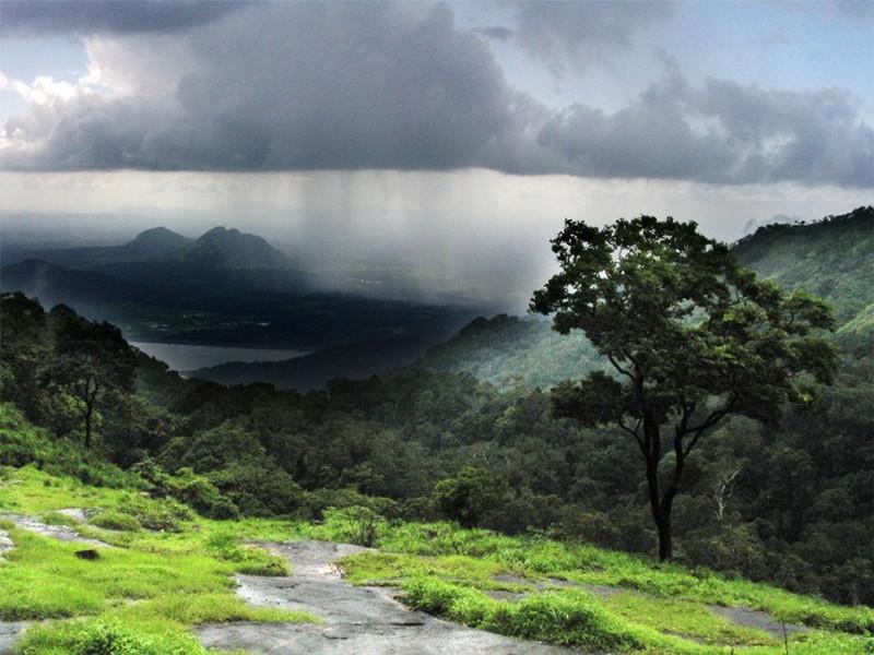 rain--kerala-photos