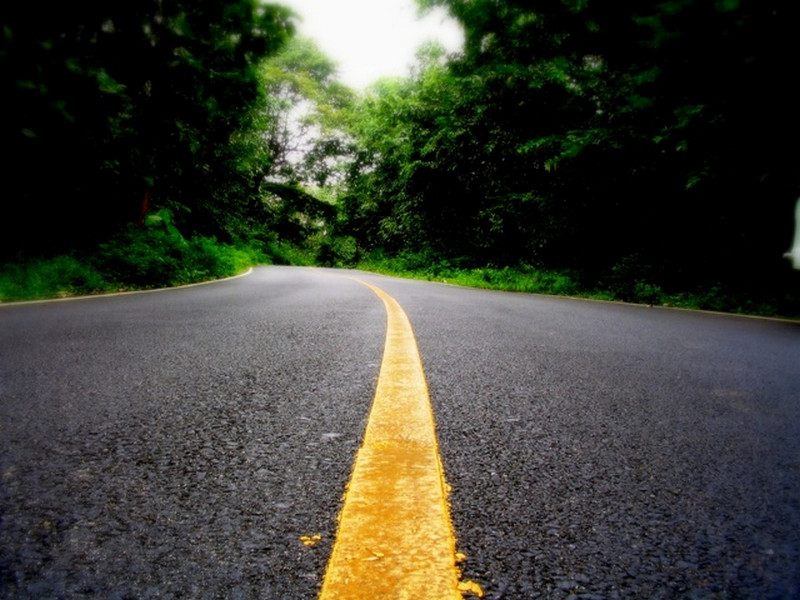 road-through-woods-kerala-pictures