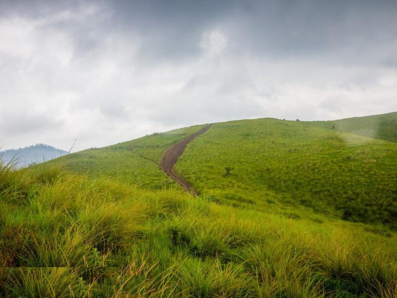 vagamon-hills-kerala