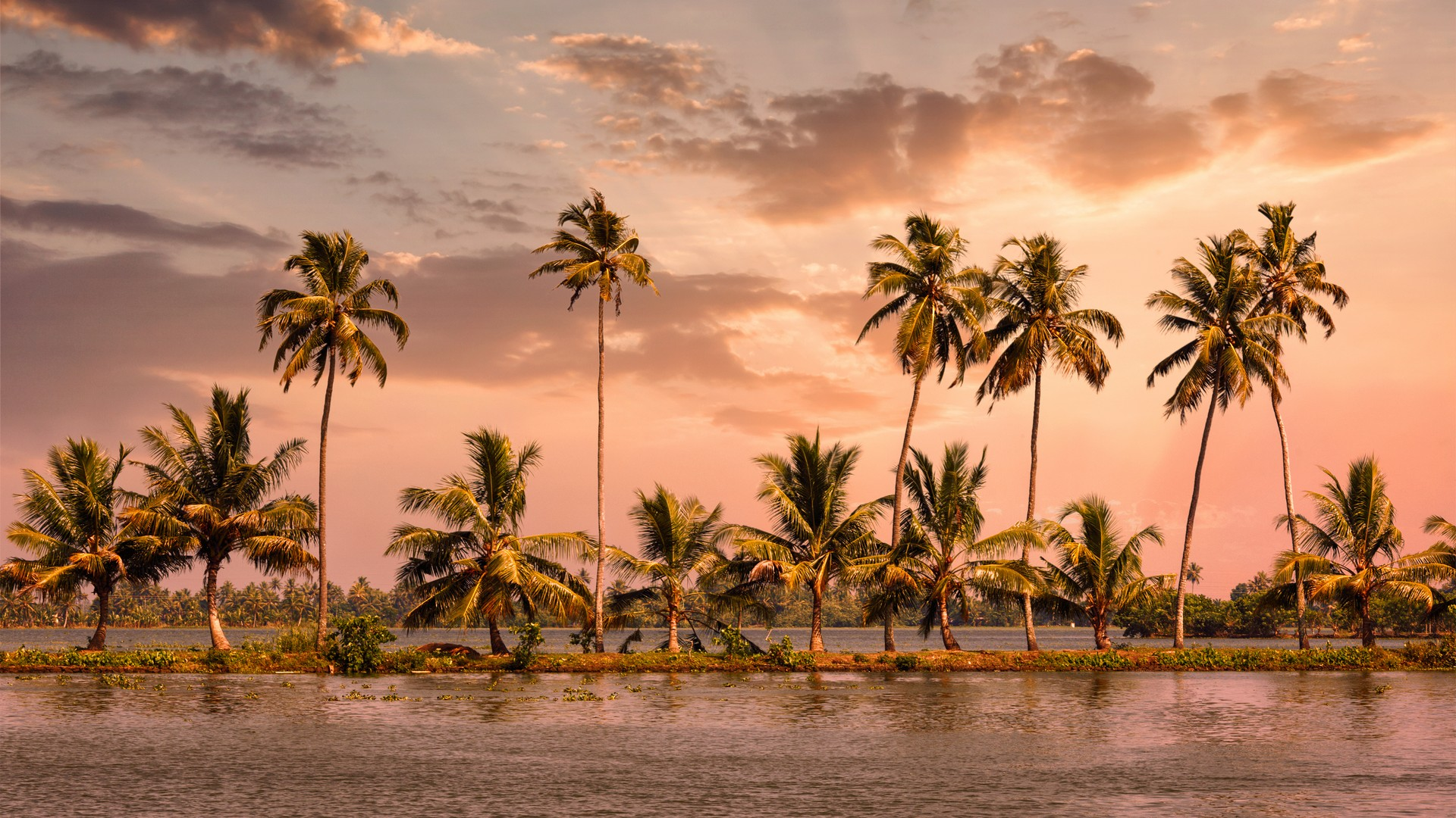 Best Places to visit in Alleppey