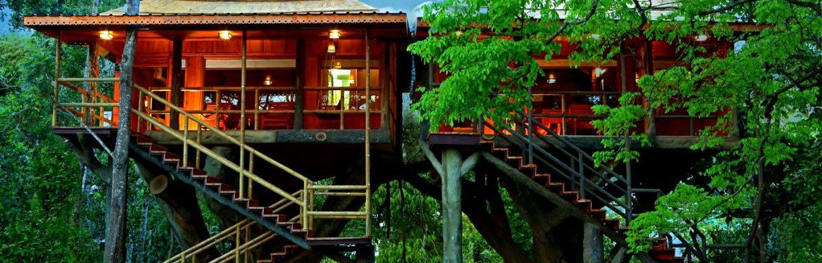 Best Treehouses in Thekkady