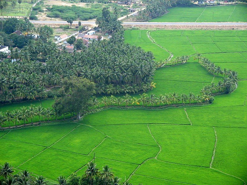 best-time-to-visit-kerala-india