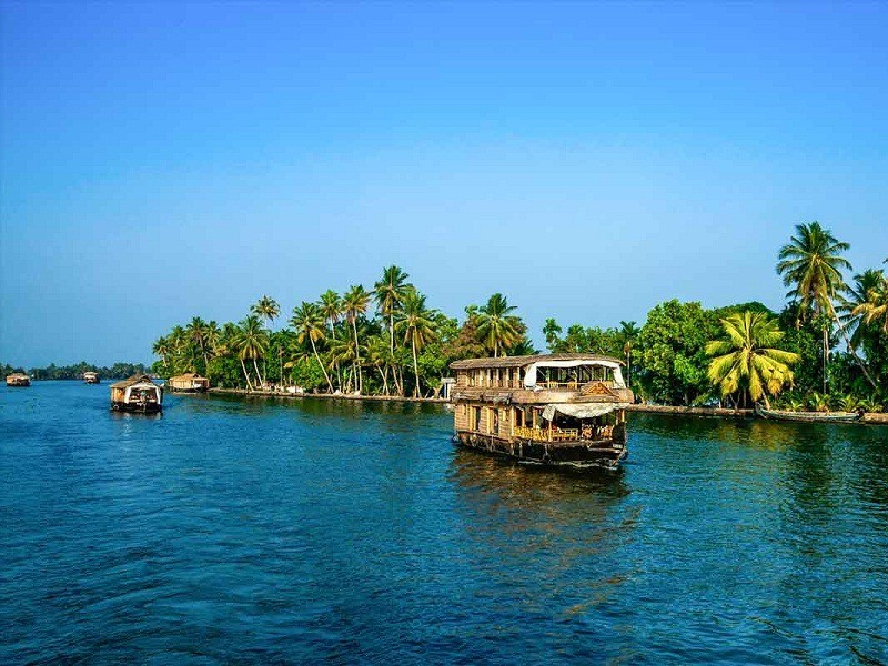 alleppey-day-cruise-one-day-trip-from-kochi