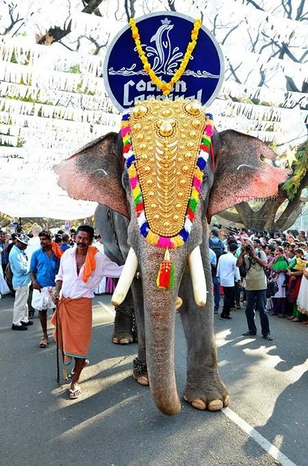 cochin-carnival-kerala-new-year-celebratio-01