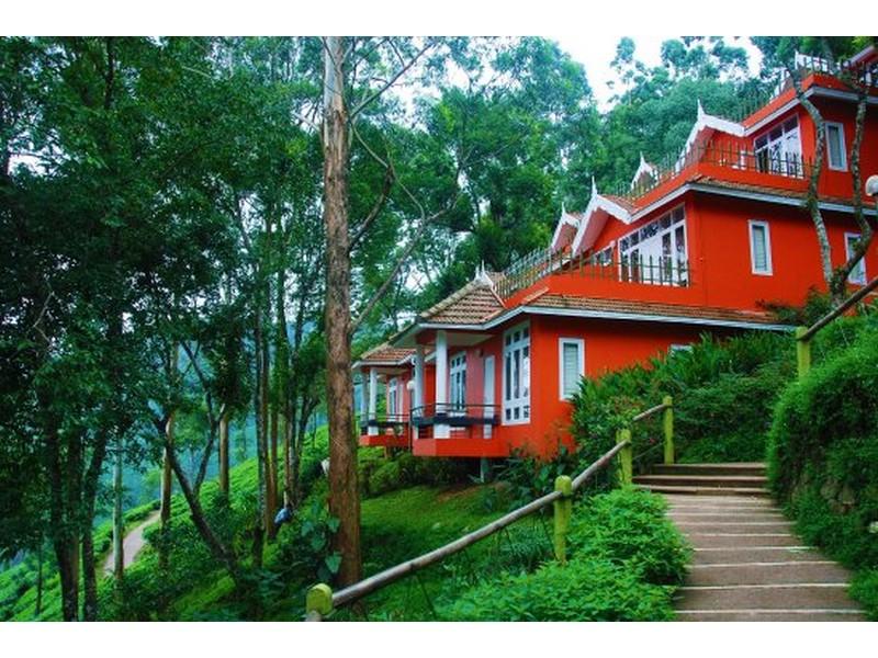 tea-valley-resort