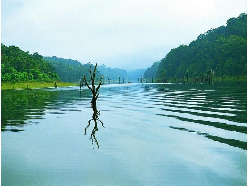 thekkady-lake-kerala