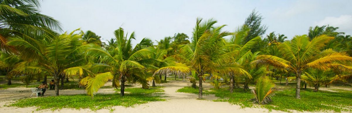 Best Time to Visit Marari Beach
