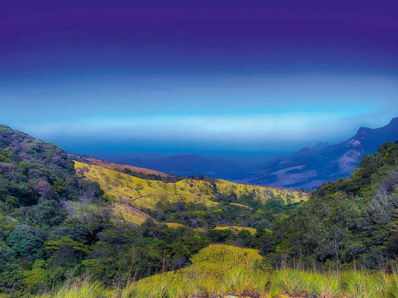 best-trekking-places-in-kerala