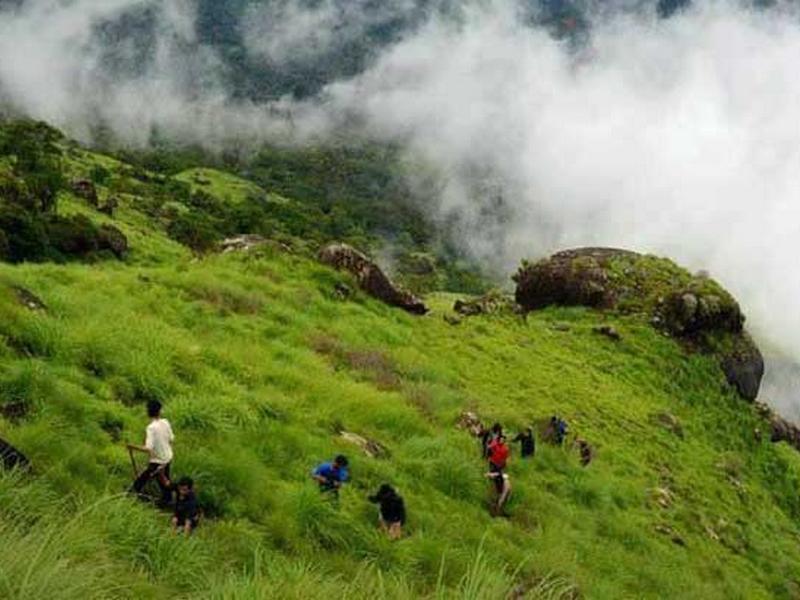 chokramudi-trekking-kerala