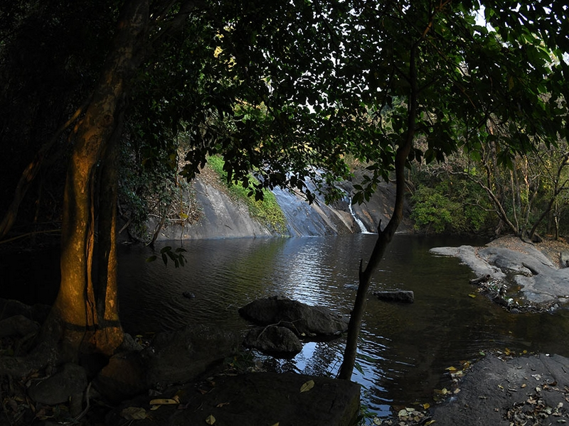 dhoni-hills-kerala-trekking