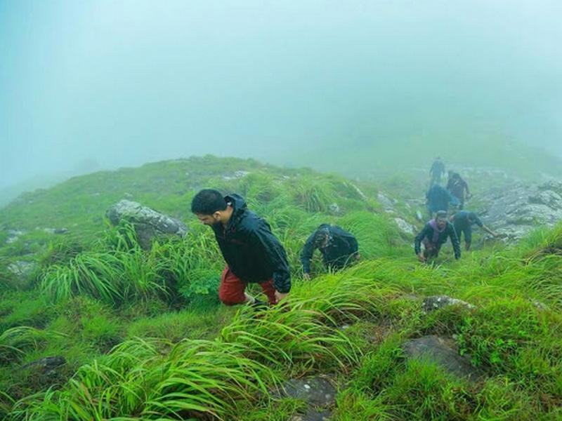 nelliyampathi-trekking-monsoon